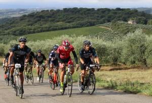 gruppo ciclisti ad albola